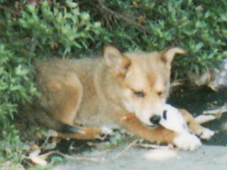 199705.jpg