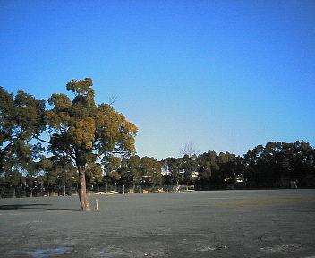 2008-0106 037.jpg