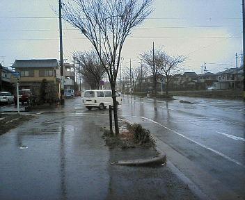 2008-0324 004.jpg