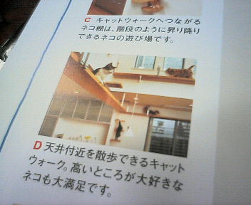 NEC_000711111.jpg