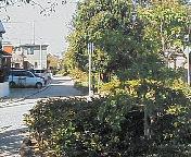 image/musa-room-2005-10-21T12:34:49-1.jpg